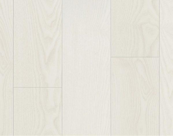 62001256 B6501 B&W White